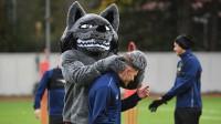 Par Latvijas futbola talismanu kļuvušais vilks izlases treniņā. Foto: Romāns Kokšarovs/f64