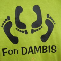 fon Dambis